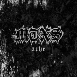 """Kritik: MTXS – """"Ache"""""""