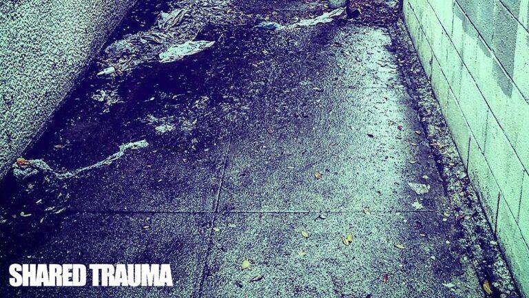 Shared Trauma The Black Dahlia Murder The Faceless